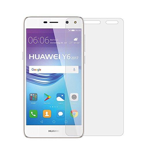 Apsauginis grūdintas stiklas Huawei Y6 (2017, 2.5D)